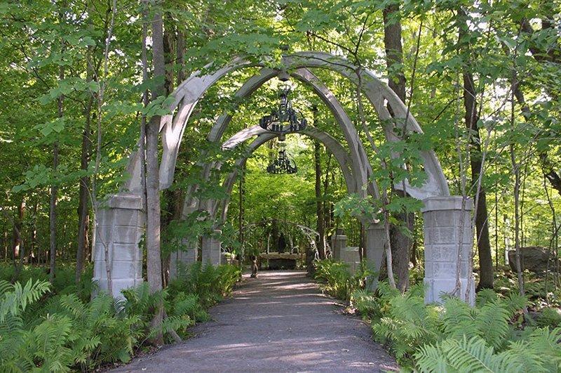 jardin dombre 2