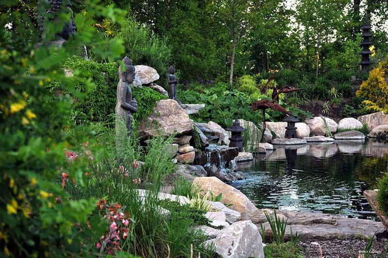 jardin zen bassin